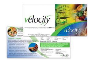 Velocity Software Brochure Design