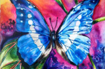 Blue Morpho Butterfly Series – Awakening from the Shadows