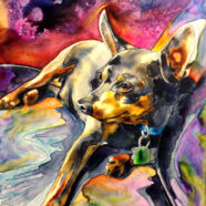 Psychedelic Dog